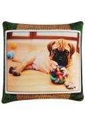 Подушка Игрушка Животные Кошки и Собаки 2