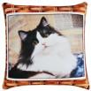 Подушка Игрушка Животные Кошки и Собаки 9